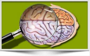 What Is Brain Mapping